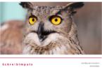 Schreibimpuls - Weisheit der Tiere
