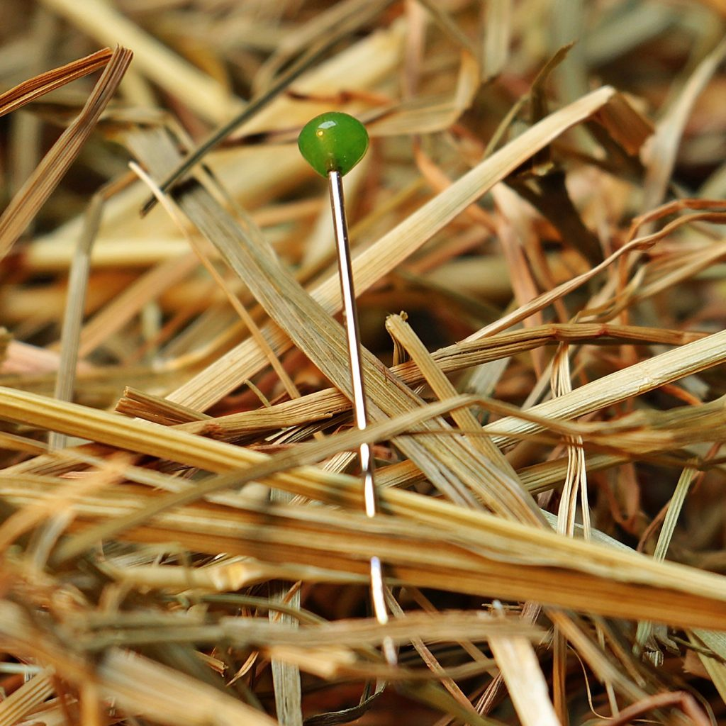 needle-in-a-haystack-1752846_1920
